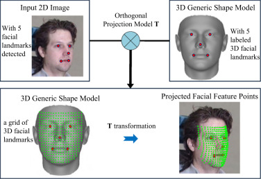 Pose-invariant face recognition with homography-based normalization