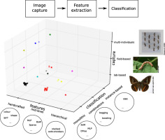 A survey on image-based insect classification - ScienceDirect