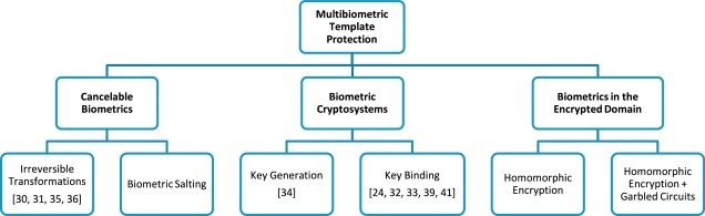 Multi-biometric template protection based on Homomorphic