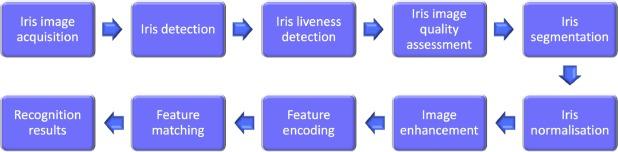 Long range iris recognition: A survey - ScienceDirect