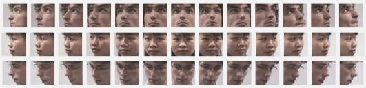 Head pose estimation in the wild using Convolutional Neural
