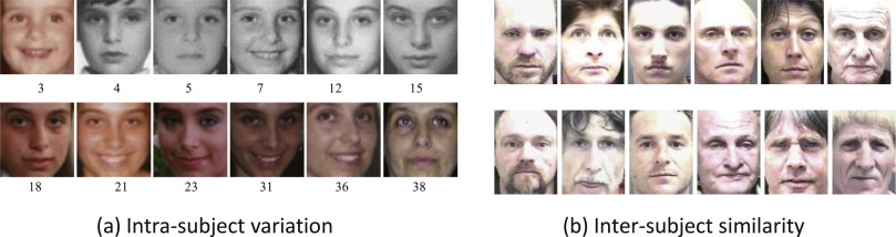 Facial recognition metrics