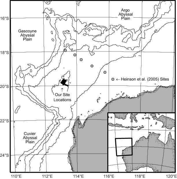 Magnetotelluric Evidence For Layered Mafic Intrusions Beneath The