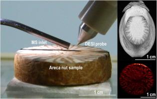 Developmental patterning and segregation of alkaloids in areca nut