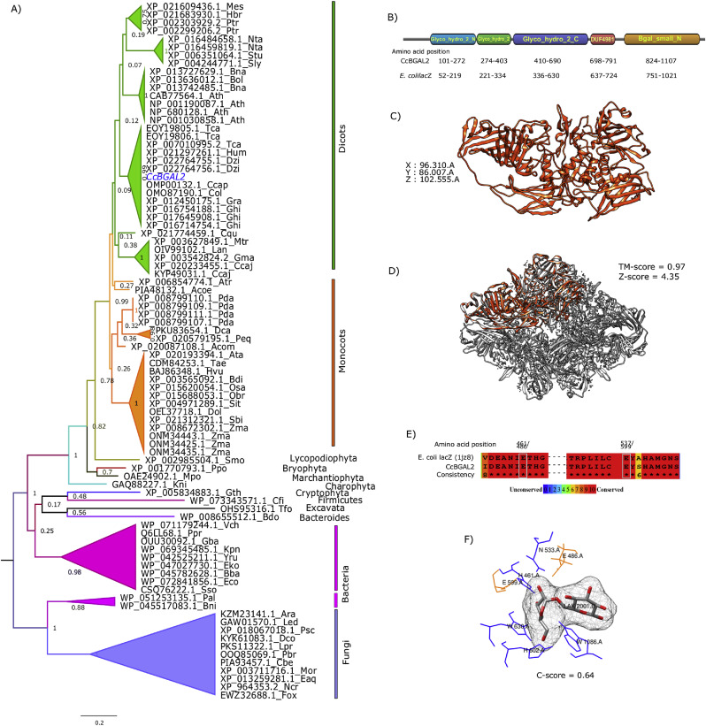 Transcriptome profiling uncovers β-galactosidases of diverse domain