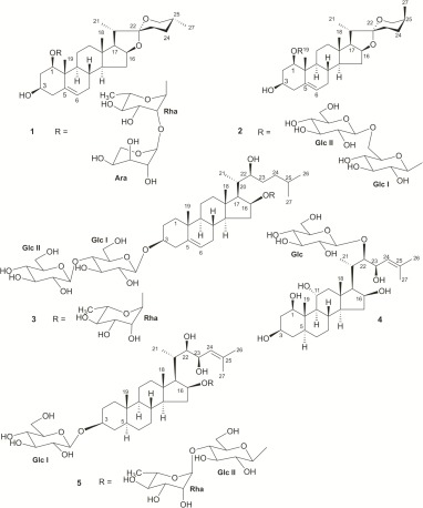 Steroidal Glycosides From Ornithogalum Dubium Houtt