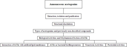 Acetogenins From Annonaceae Family Their Potential Biological Applications Sciencedirect