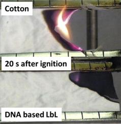 Ballesio F Lli Srl.Green Dna Based Flame Retardant Coatings Assembled Through