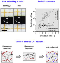 Electrical conductivity of melt-spun thermoplastic poly(hydroxy
