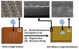 All-cellulose composite laminates with low moisture and water