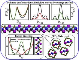 Molecular dynamics simulation of polymer-coupled ion