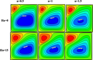 FDLBM simulation of magnetic field effect on natural convection of