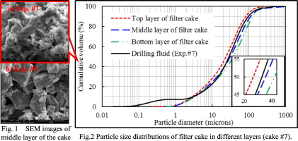 Effect of water-based drilling fluid components on filter cake