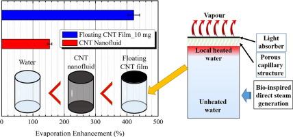 Enhanced direct steam generation via a bio-inspired solar