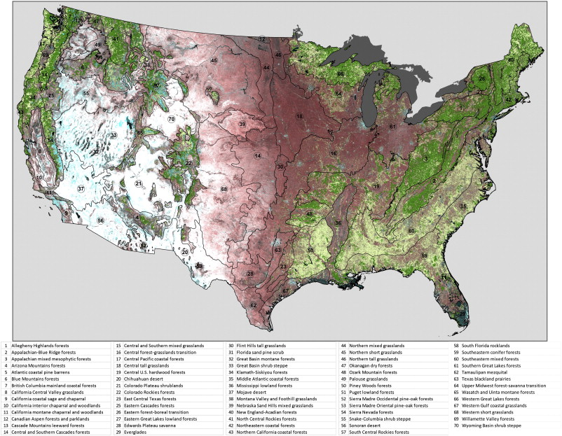 Monitoring conterminous United States CONUS land cover change with