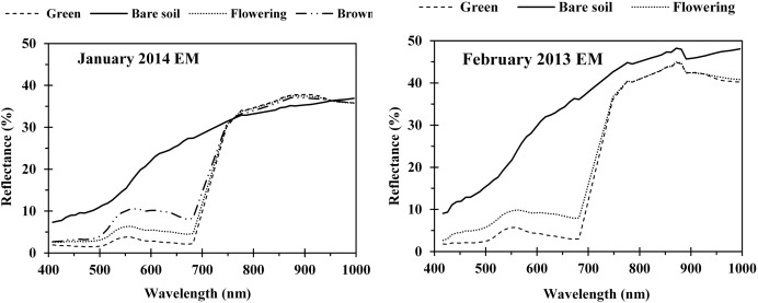 Application of hyperspectral remote sensing for flower mapping in