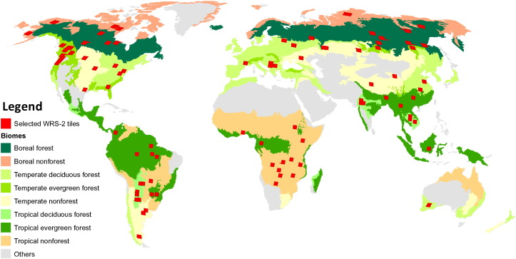 Earth science data records of global forest cover and change ... on tundra map, conifer forest map, taiga forest map, coniferous forest map, biome map, chaparral map, grassland map, temperate forest location map, wildlife forest map, taiga forst map, climate map, minnesota state forest land map, rain forest map, coral reef map, autumn leaf color, desert map, steppe map, wetlands map, evergreen forest map, world map, simple forest map,