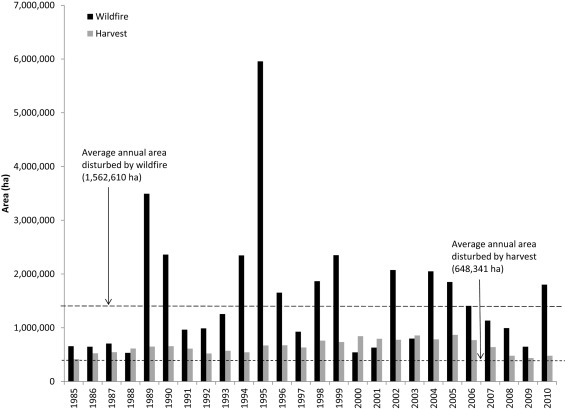 A nationwide annual characterization of 25 years of forest