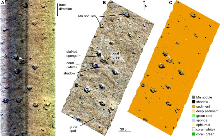 First Hyperspectral Imaging Survey Of The Deep Seafloor High
