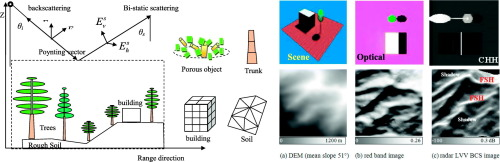 Extending RAPID model to simulate forest microwave backscattering