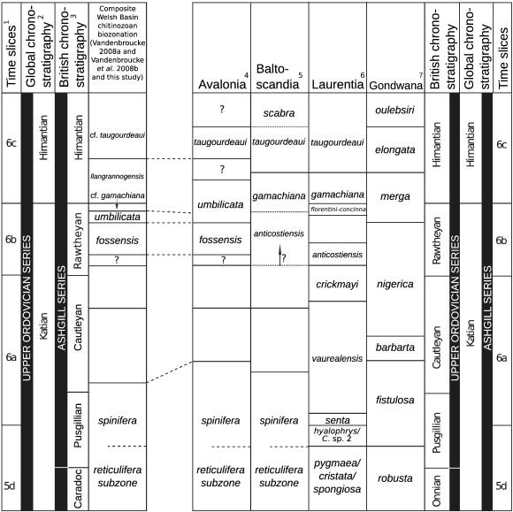 Chitinozoan biostratigraphy dating