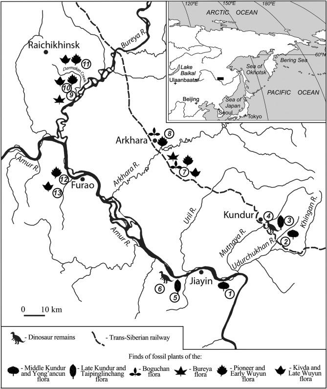 Early Paleogene Boguchan Flora Of The Amur Region Russian Far East