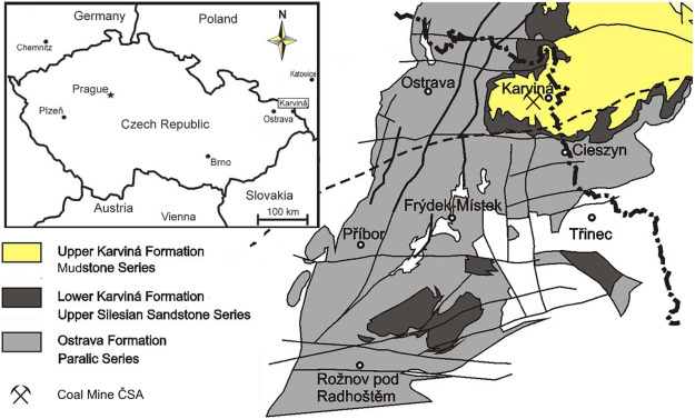 The earliest evidence of cordaitalean cuticles from coal in the