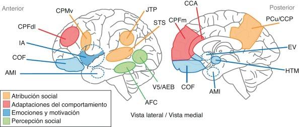 Cognición social en esquizofrenia: aspectos cognitivos y ...