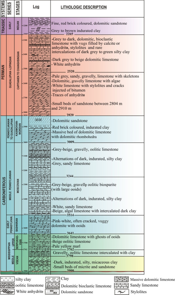 Carboniferous and Permian biostratigraphy by foraminifers and ...