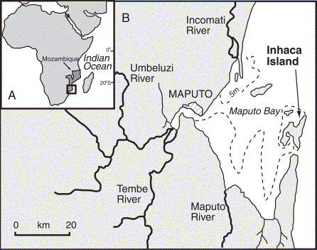 Tembe Island Mozambique