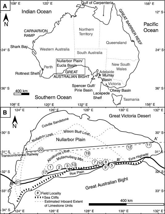 The Miocene Nullarbor Limestone Southern Australia Deposition On A