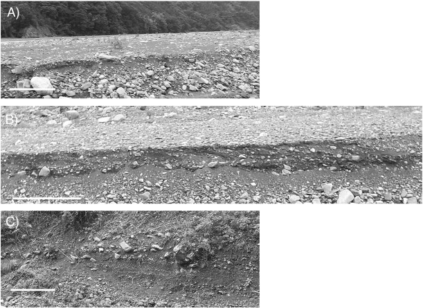 Hwl Platte depositional and erosional architectures of gravelly braid bar