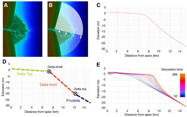 Can bed load transport drive varying depositional behaviour