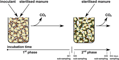 Establishment of macro-aggregates and organic matter turnover by