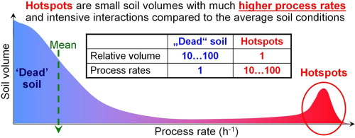 Microbial hotspots and hot moments in soil: Concept & review