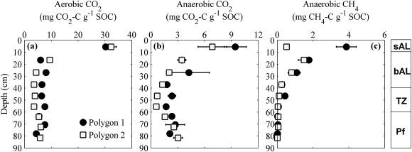Regulation of soil organic matter decomposition in