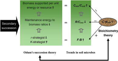 1 s2.0 S0038071717305527 fx1 trends in soil microbial communities during secondary succession