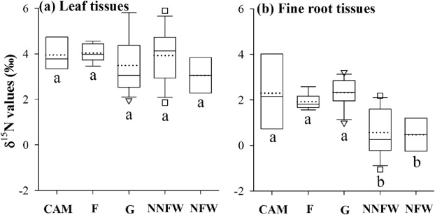 Vegetation change alters soil profile δ15N values at the