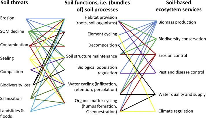 Soil quality – A critical review - ScienceDirect