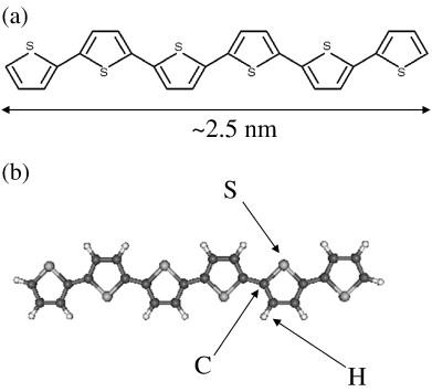 Determination of molecular orientation of α-sexithiophene on