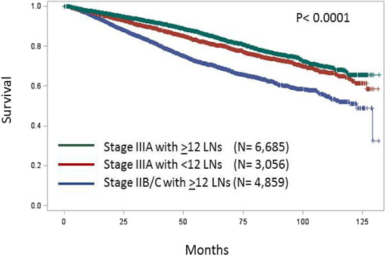 Positive Surgical Margins Contribute To The Survival Paradox Between Patients With Stage Iib C T4n0 And Stage Iiia T1 2n1 T1n2a Colon Cancer Sciencedirect