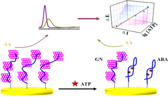 1 s2.0 S003991401400993X fx1 a new electrochemical aptasensor based on electrocatalytic property