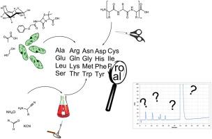 Amino acid analysis for pharmacopoeial purposes - ScienceDirect