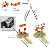 Lab-on-a-chip based biosensor for the real-time detection of