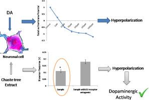 Assessment of in vitro dopamine-neuroblastoma cell