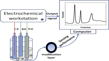 A review of the identification and detection of heavy metal ions in
