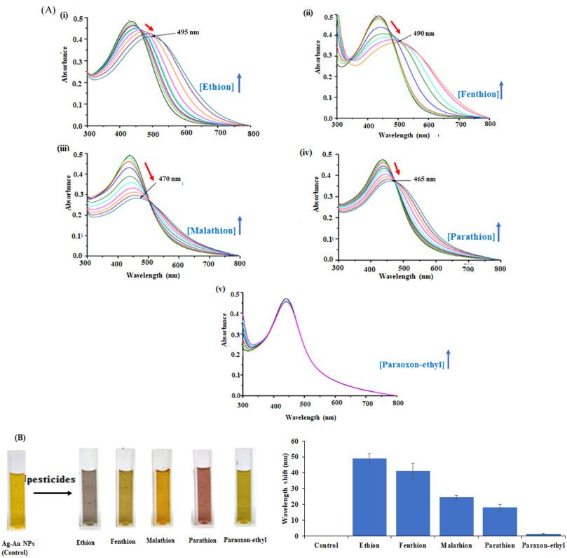 Highly sensitive plasmonic metal nanoparticle-based sensors