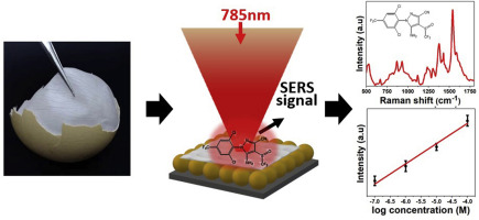 A facile and label-free SERS approach for inspection of