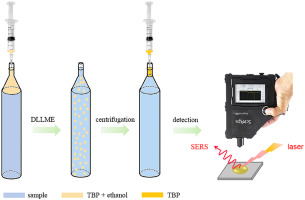 Dispersive liquid-liquid microextraction coupled with