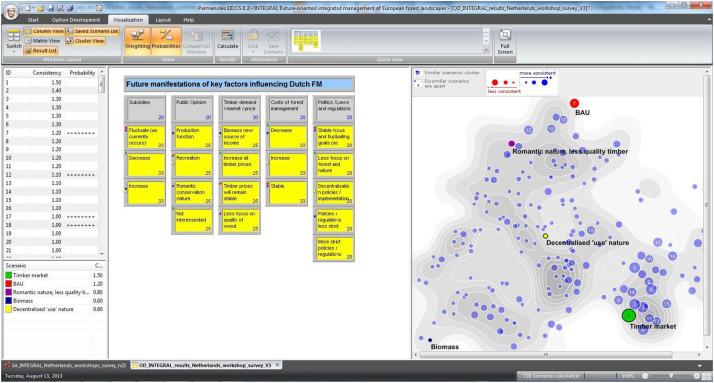 Web-based software-support for collaborative morphological